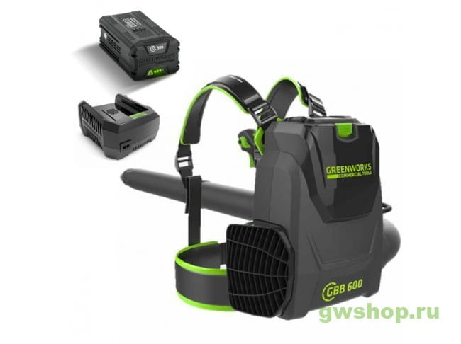 GC82BPBK5 2402507UB в фирменном магазине GreenWorks